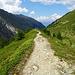 Wanderweg auf dem Geländerücken