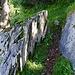 Wegpassage auf dem Abstieg zur Alp Ronen.