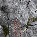 Von mir im Oktober 2010 eingerichteter Abseilstand über dem untersten Abbruch des Rothore NE-Grats: die grosse Schlinge ist inzwischen auch etwas in die Jahre gekommen, aber Knoten und Haken halten noch...