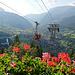 Geranien schmücken nicht nur die Gondeli, sondern auch das Geländer bei der Bergstation. Kitsch pur! ^_^