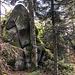Zu Stein erstarrte Gnome stehen hier im Wald.