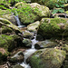 Das Wasser schlängelt sich durch die bemoosten Felsen ...
