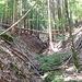 Rückweg durchs Dentelbachtal zum Ausgangspunkt