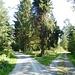 Unterwegs im Kuhnbachtal