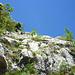 Nach der ersten Steilstufe im Riss, danach gutgestuftes Gelände.