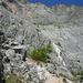 Steil zieht der Steig nach oben und geinnt eine weitere Felsstufe.