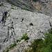 Anstieg zur Schulter (675m) - Felsgruppe im Vordergrund. Dahinter, an der glatten Wand, zieht der Steig nahe der Bildmitte senkrecht nach oben (man erkennt 2x KSGeher rechts u. links des dunklen Bäumchens).<br />Mein Standpunkt: die letzte schattenspendende Buschgruppe für die nächsten 2h - ideal für eine kurze Pause.