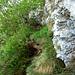 ENDLICH Schatten !!! Der Ausstieg aus dem Steig unterhalb einer kleinen Felswand.