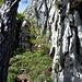 Eine der beiden Kletterstellen zum Schluß