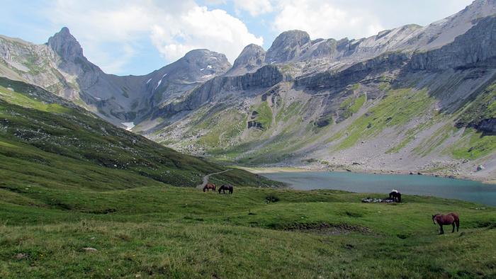Ein Bild, das Gras, Berg, draußen, Natur enthält.  Automatisch generierte Beschreibung
