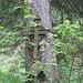 uraltes Grünspan-überzogenes Kreuz mit Wildrose im Vordergrund