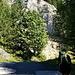 Auffahrt auf die Eisenkappler Hütte