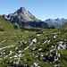 Biberkopf, Rechts die Allgäuer Alpen