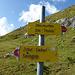 Etwas westlich von Punkt 2421m stießen wird dann wieder auf dem markierten Wanderweg.