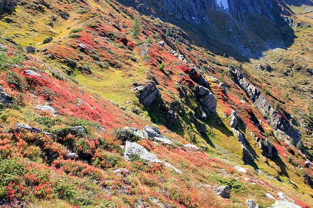 Terrasses multicolores (vue arrière).