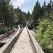 """Trebević - Unterwegs an der Olympischen Bob- und Rodelbahn. Talblick über die """"Hauptbahn"""". Rechts ist offenbar die vom Starthaus 2 kommende Rampe zu erahnen, links die per Weiche abzweigende """"Nebenbahn"""". Siehe auch [https://en.wikipedia.org/wiki/Sarajevo_Olympic_Bobsleigh_and_Luge_Track hier] (besonders die dort veröffentlichten Skizzen geben eine guten Überblick)."""