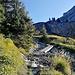 Brücklein bei Alp Glütsch