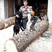 <b>A partire da Giof il paesaggio diventa incantevole. Mi fermo all'Alpe di Ravina per chiacchierare un po' con l'alpigiano Alessio, intento a tagliare un grosso tronco con la motosega. Sono gli ultimi giorni di permanenza all'alpeggio. Una volta finito lo stoccaggio di legna per alimentare la caldaia nella prossima stagione, tornerà a casa, a Bergamo. </b>