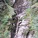 <b>Il torrente Calcascia è attualmente in secca; noto tuttavia nel suo alveo un grande tronco di abete che testimonia la potenza che assume il fiume in piena.</b>