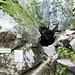 Eingang zur Grotte Dagobert