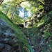 Schöne grüne mit Moos überzogene Felsen