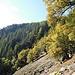 Geröllfeld am Sentier des Roches