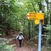 Bivio Q1590, diritti si sale all' Alpe Remiasco, in salita per Alpe Bietri / Bocchetta di Doia