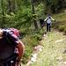 Il bel sentiero tra Passo della Bassa e Capanna Alpe Canaa