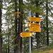 Palina all' arrivo del sentiero, il Passo della Bassa è poco sopra