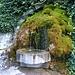 Schön mit Moos überwachsener Felsbrunnen