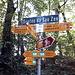 <b>Alle 11:30 riprendo il percorso. Dal promontorio di San Giorgio (454 m), la pista scende nel bosco fino al punto più basso della gita a 338 m di quota. </b>
