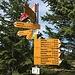 Die Wege, die nach rechts führen, berühren interessante Gebiete. Ich werde nochmals wieder kommen müssen.