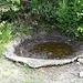 ein kleiner Wasserspeiher am Wegesrand