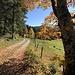 Herbstwandern ist immer ein Genuss