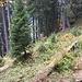 Die bescheidenen Überreste von Unt. Urseren (1557 m)
