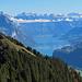 Tolle Sicht auf Hirzli, Walensee und Churfirsten.