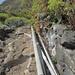 I soliti tubi per l'approvvigionamento dell'acqua lungo il sentiero