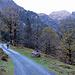 Auf dem breiten Weg unterwegs Richtung Murgseen.