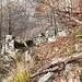 Ruderi dell'Alpe Vaccareccia 1299 mt.