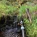 Wo das Bächle auf einen Forstweg trifft, wird mit dieser Vorrichtung Wasser entnommen.