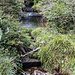 Leider führt der Bach Ende August nur wenig Wasser.