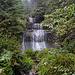 Der nochmalige Besuch des Wasserfalls hat sich gelohnt. Was hab ich mich gefreut :-)