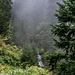 Nebelschwaden verlorener Wolken und ein Wasserfall: das passt doch.