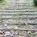 <b>La scalinata che da Trezzino porta al Santuario di Trezzo.</b>