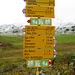 Auf Alp Flix findet man viele Wanderwegen.