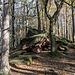 Lockerflockig dahingewürfelte Felstrümmer begegnen uns in den Wäldern immer wieder.