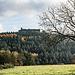 Tritt man aus dem Wald heraus, hat man wieder eine fantastische Sicht auf die Ruine Fleckenstein.