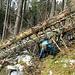 Im Bannwald ein Hindernis. Bei der Gelenkigkeit wäre bei uns beiden noch Luft nach oben