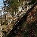 Beim Fels oberhalb vom Chliweidli im Bogental suchte ich nach der unteren Vogelberghöhle und kletterte dabei über die Felsstfe hinauf. An dieser Felswand war auf jeden Fall keine Höhle.