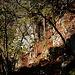 Bald war die Felsstufe nach der Suchr der Unteren Vogelberghöhle durchstiegen und ich kam an Südöstlichen Ecken einer Weide raus. In diesem untersten Felswand direkt am Fels nördlich vom Chilchweidli fand ich auf jeden Fall keine Höhle.